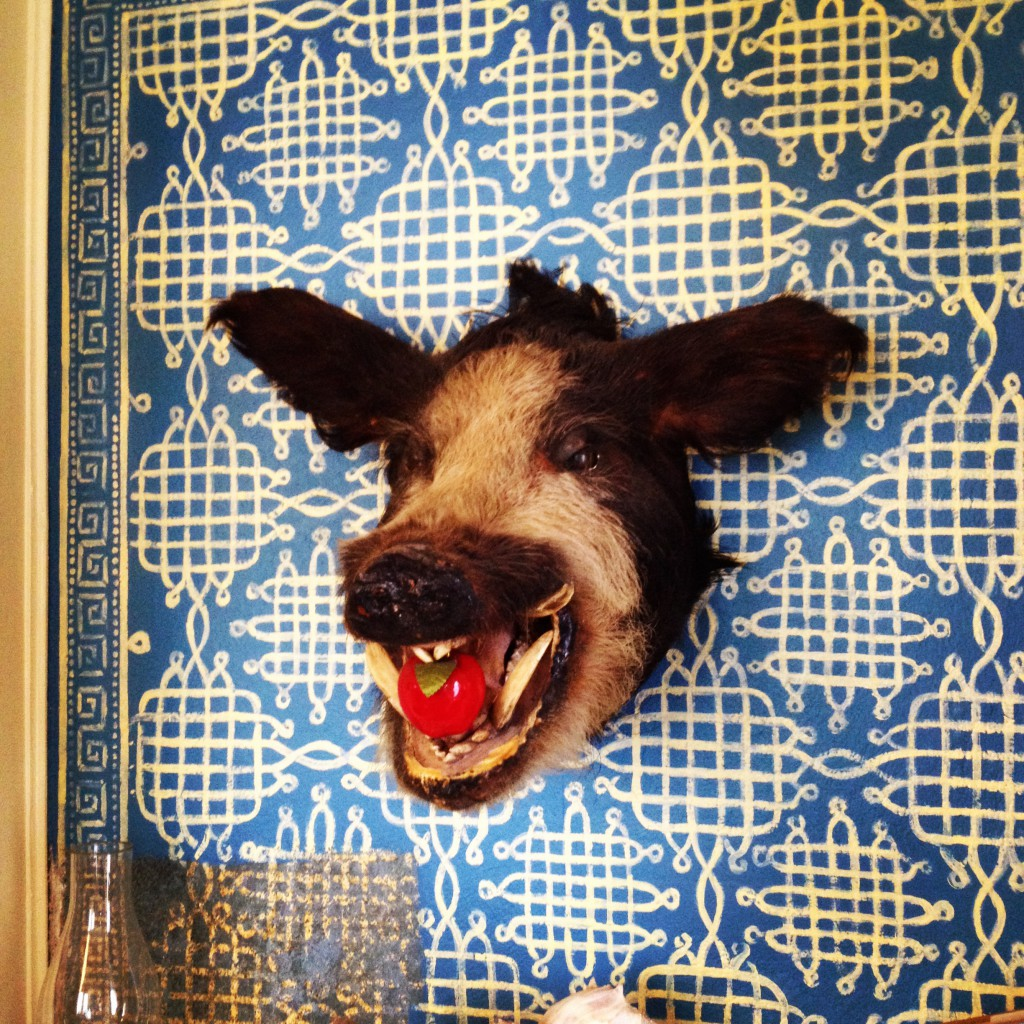 A Boar's Head from the 1890's in The Turkish Library at the Shellmont Inn - History Atlanta 2014