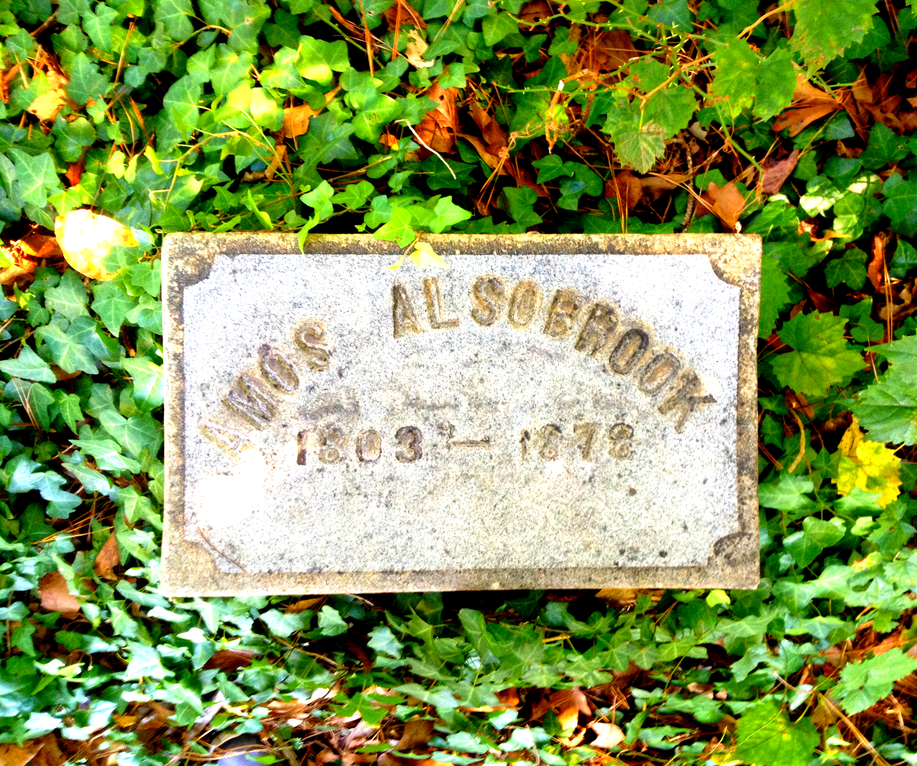 Amos Alsobrook 1803 - 1872 at Alsobrook Family Cemetery - History Atlanta 2014