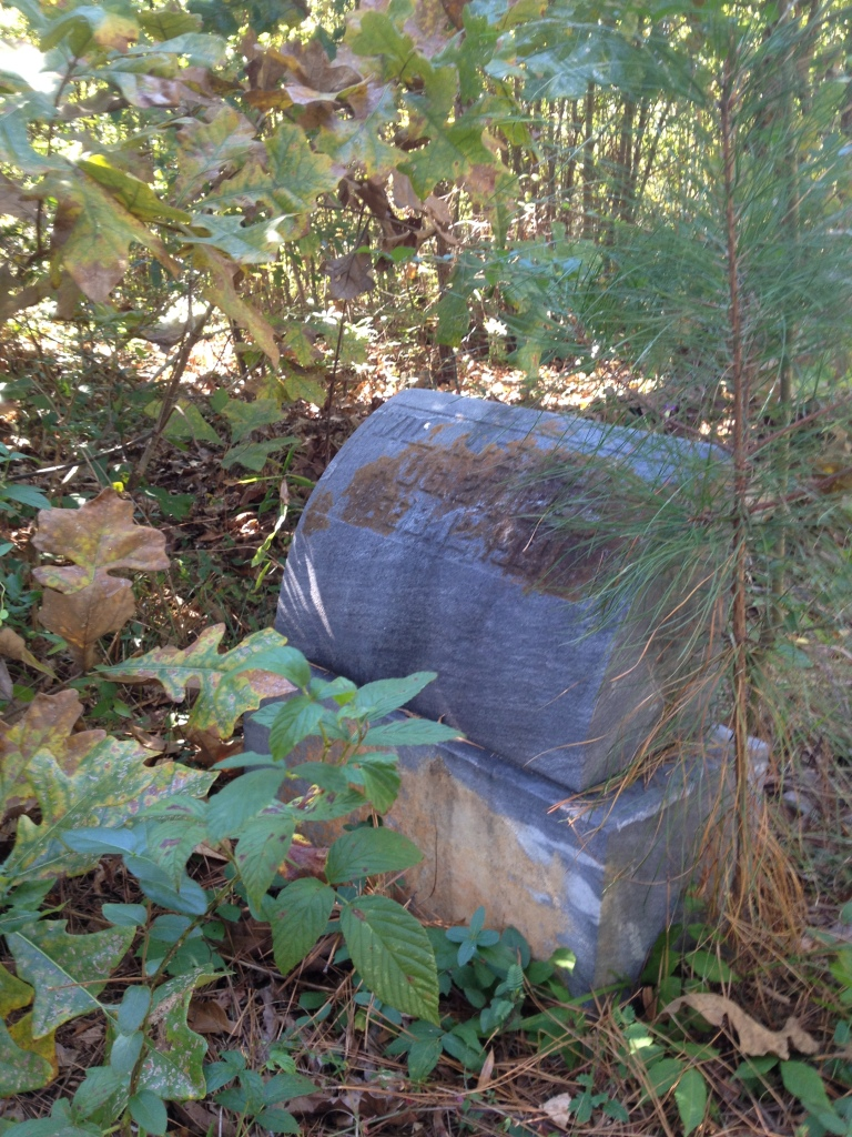 An Overgrown Grave at Scottdale Mills Cemetery - History Atlanta 2014