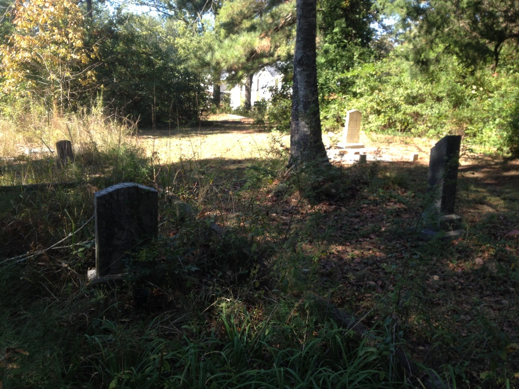 During My Last Visit to Scottdale Mills Cemetery Most of the land was Cut Back but Some Areas were a Bit Overgrown - History Atlanta 2014