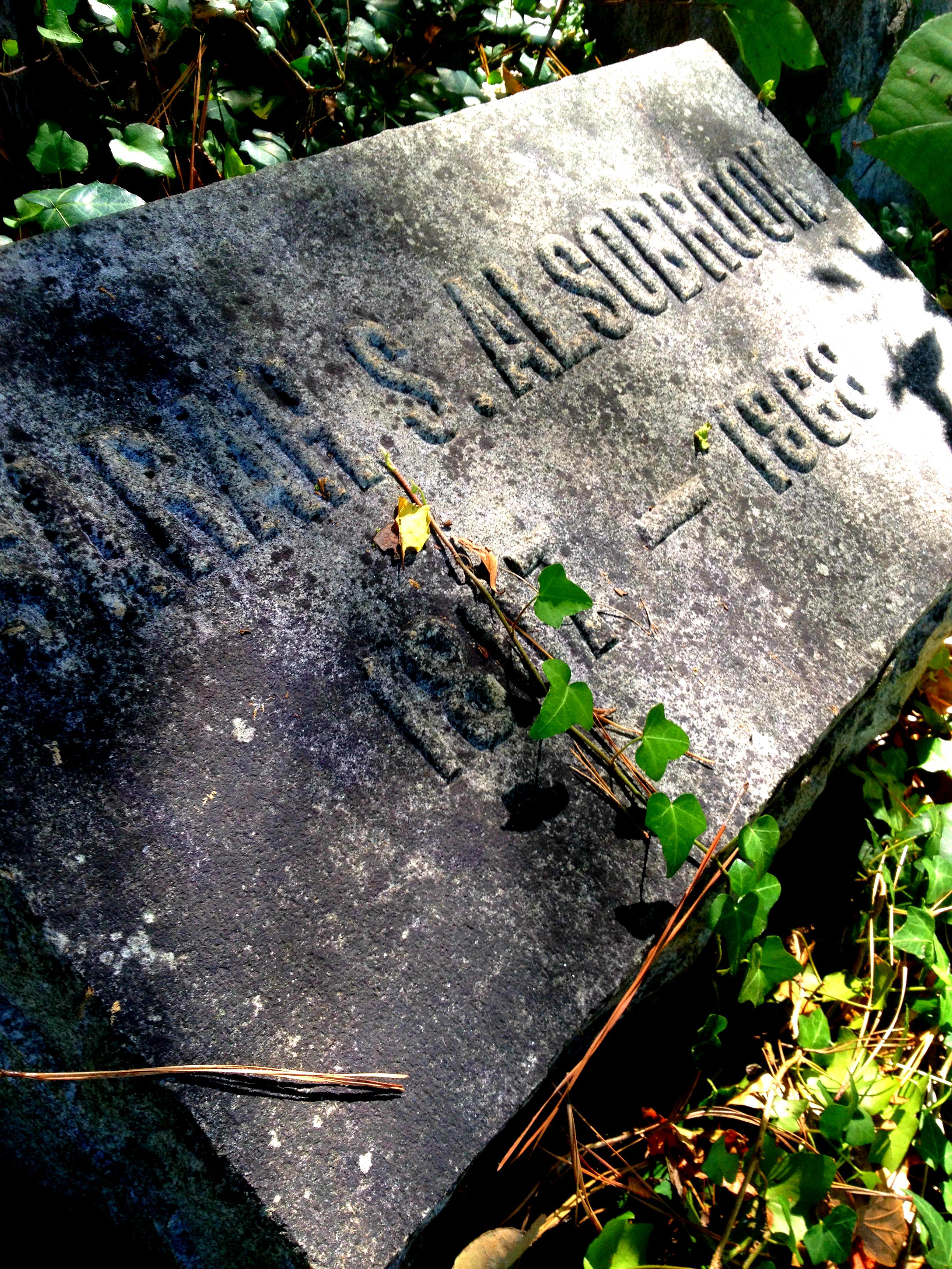 Sarah S Alsobrook 1807 - 1868 Alsobrook Family Cemetery - History Atlanta  2014