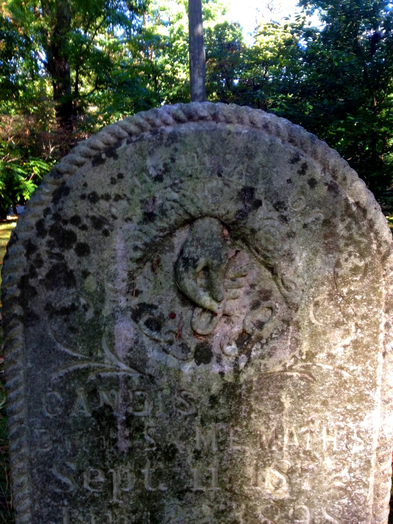 The Missing Link - A Mathis Family Grave - Circa 1898 at Harmony Grove Cemetery - History Atlanta 2014